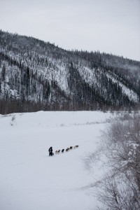 Hugh Neff approaches Dawson City